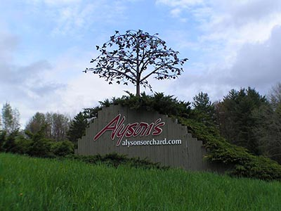 Alyson's Orchard Main Sign