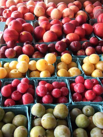 wholesale_fruit1
