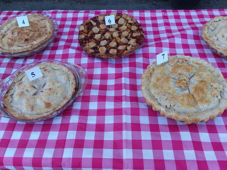 Alyson's Annual Apple Festival & Apple Pie Competition